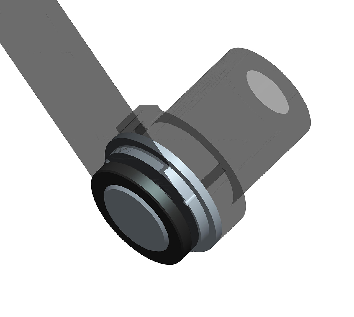 Polarscope adapter